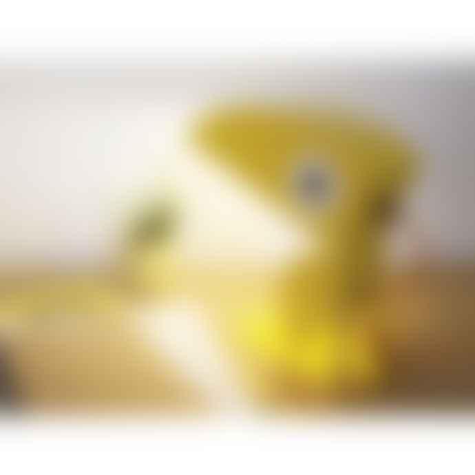 Bleu Carmin Yellow Toucan Lamp