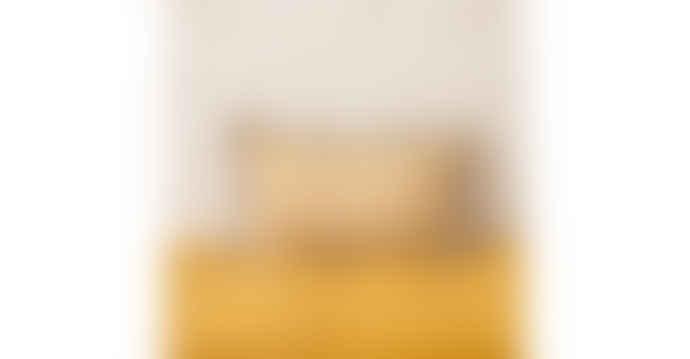 Balakata 30 x 50cm Mustard Linen Jaipur Printed Cushion Cover