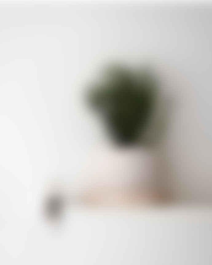 Erika Petersdotter Ceramic flower pot white Lava speckles