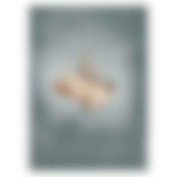 Mrs Mighetto 50 x 70cm Dear Sparrow Poster