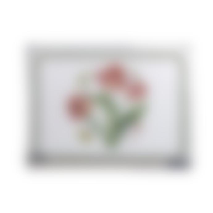 Pimpernel Set of 6 30.5 x 23cm Botanic Garden Placemats