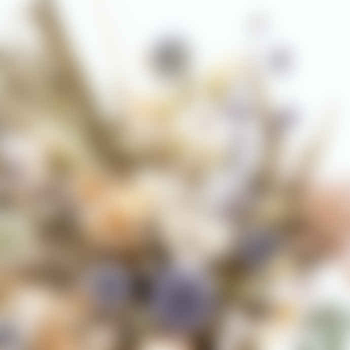 Pompon Bazar Bouquet of dried flowers October, THISTLE
