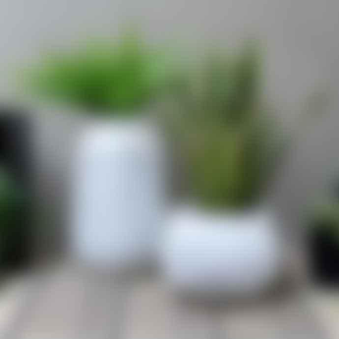 Parlane Ceramic 'Organic' Planter