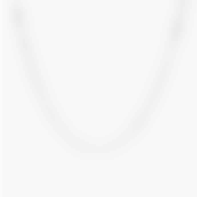 Wildthings Collectables Box Choker Silver - 36 cm
