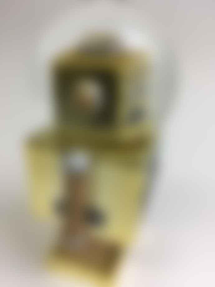 Donkey Products Snowglobe Robot Gold