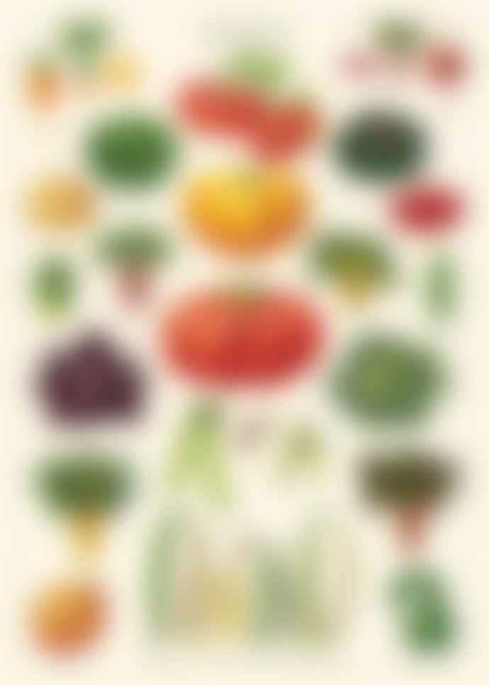 Cavallini & Co Vegetable Garden Poster