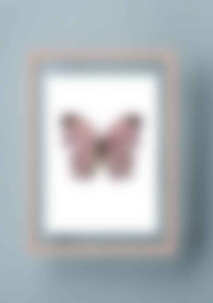 Moebe Pale Rose A4 frame + Liljebergs print (3 variants)
