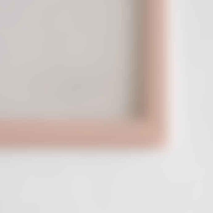 Moebe Pale Rose A3 frame + Liljebergs print (3 variants)