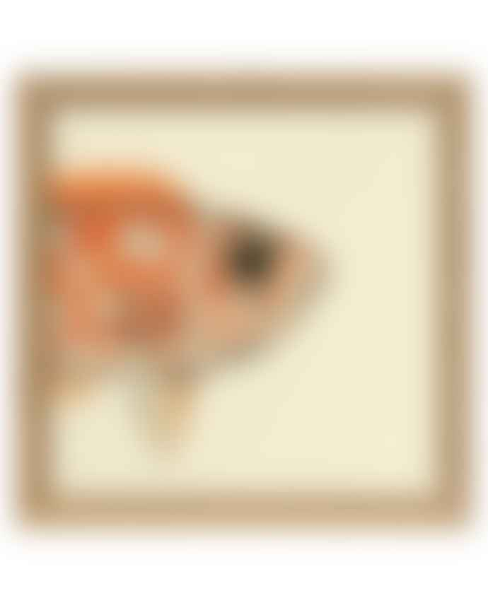 Dybdahl Orange Fish Print
