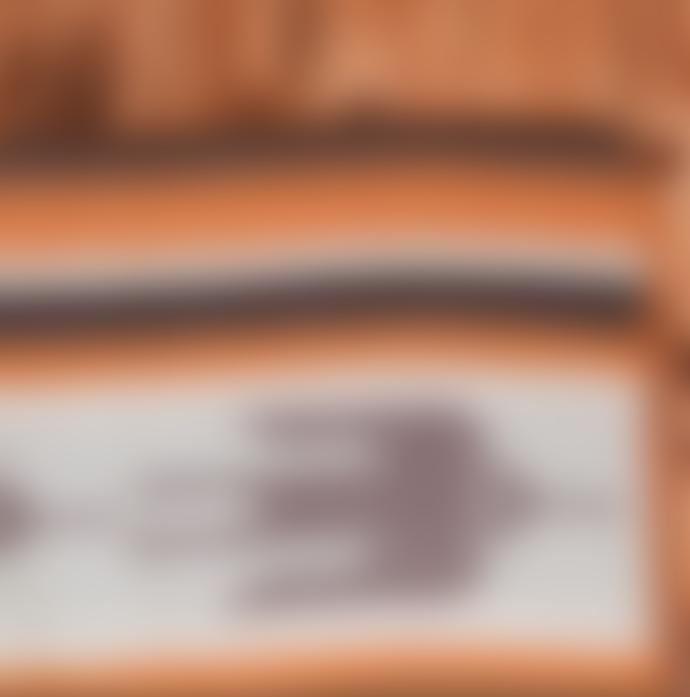 Pike Brothers 1969 Road Runner Blanket