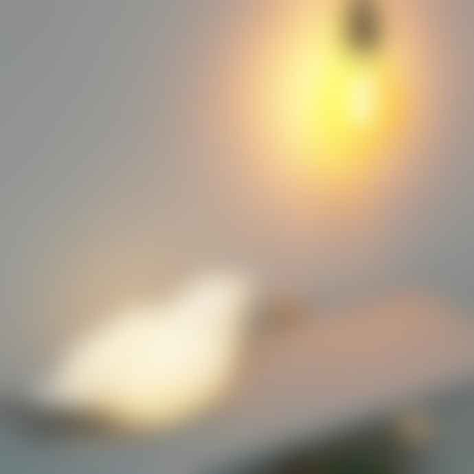 House of disaster White Origami Bird Lamp