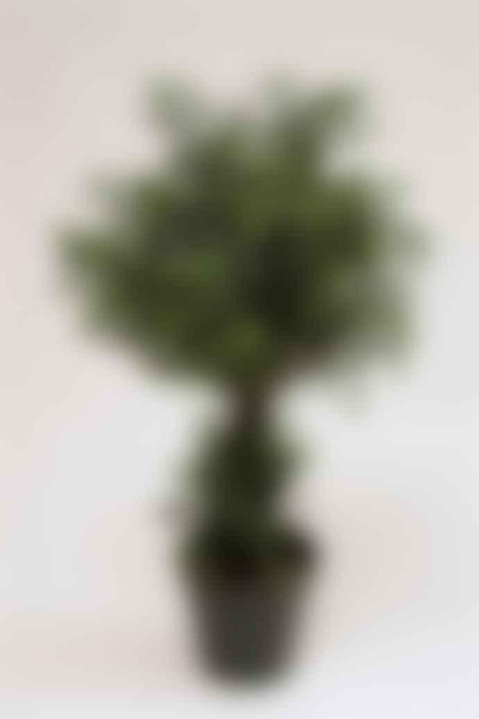 Vranckx Artificial Green Tea Leaf Pot