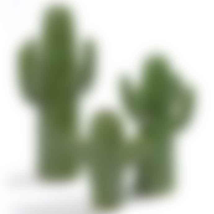 Serax Medium Green Cactus Vase