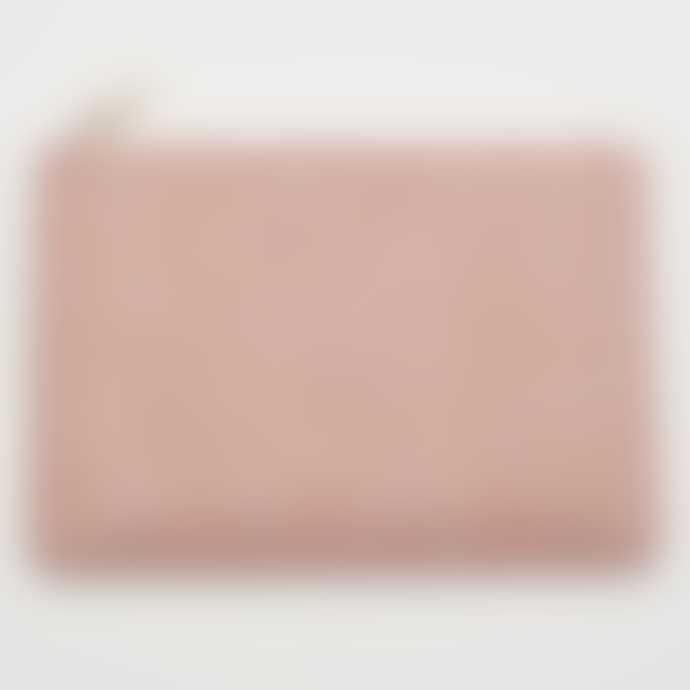 Estella Bartlett  23 x 16cm Pink Blush Snake Effect Clutch