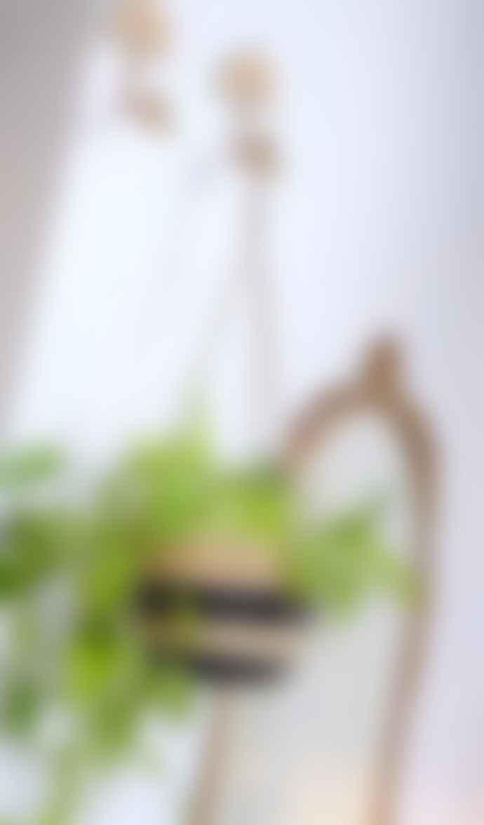 Sass & Belle  Black Stripe Scandi Seagrass Hanging Planter