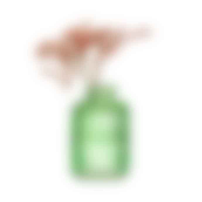 Sass & Belle  Green Glass Vase