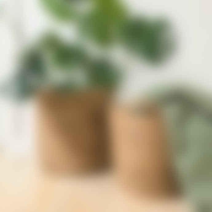 Wikholm Form Rustic Natural Woven Planter Large