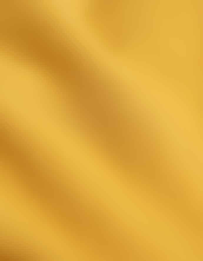 Colorful Standard Burned Yellow Classic Organic T Shirt