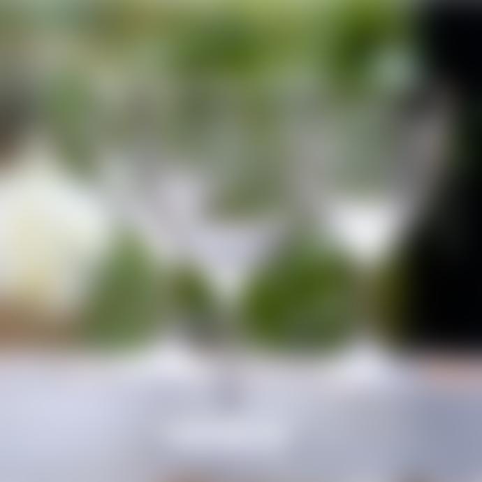 The Vintage List Set of Six 'The Vintage List' Lens Design Wine Glasses