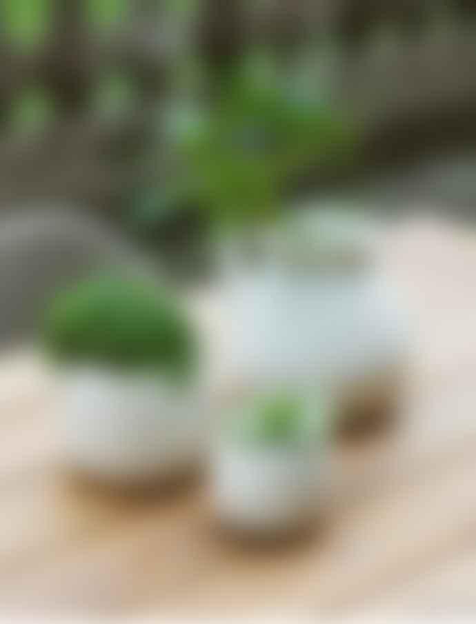 Garden Trading Small White Ceramic Crackled Glazed Plant Pot