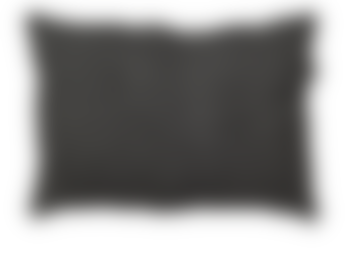 Lime Light Dark Grey Linen Cushion