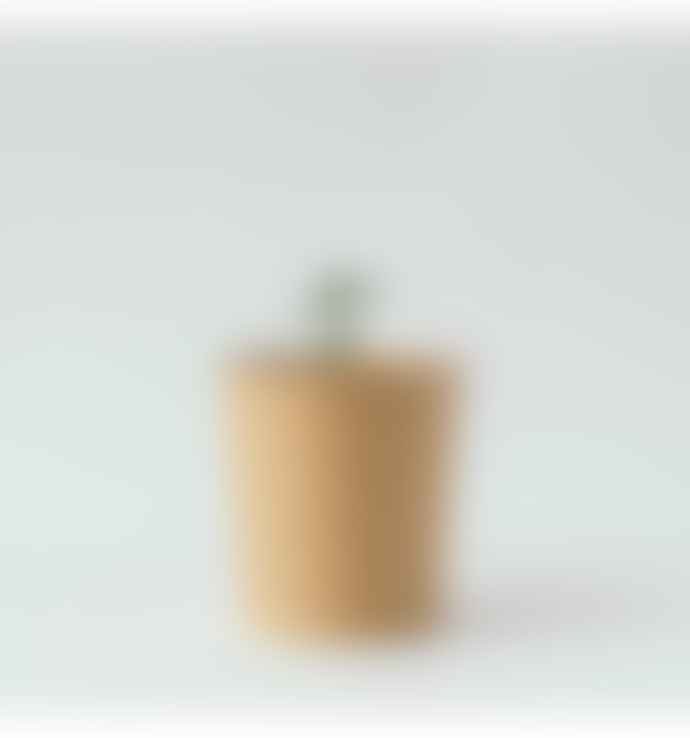 Rhoeco Fine Organic Foods MOUNTAIN Organic Herbal Tea Blend