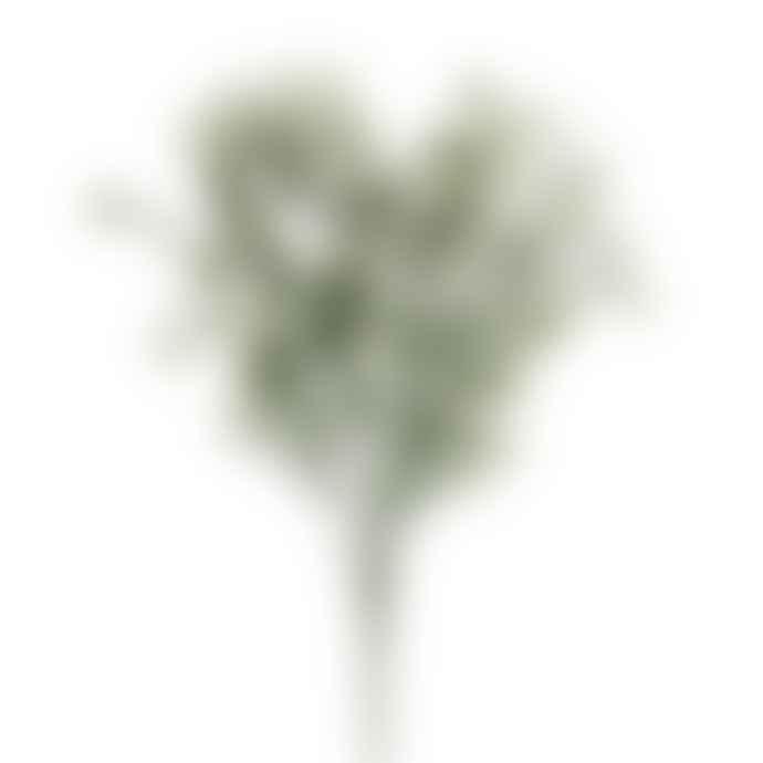 Gisela Graham White Flower Spray