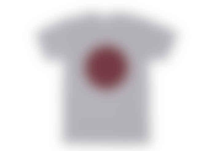 Plain Bear T Shirt in Grey with Burgundy Circle Design
