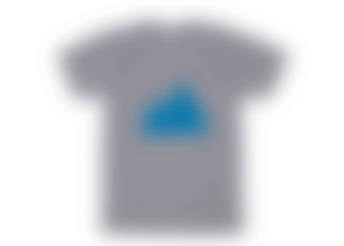 Plain Bear Mountain T Shirt in Grey with Blue Design
