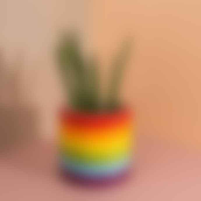 DOIY Design Rainbow Plant Pot Multi