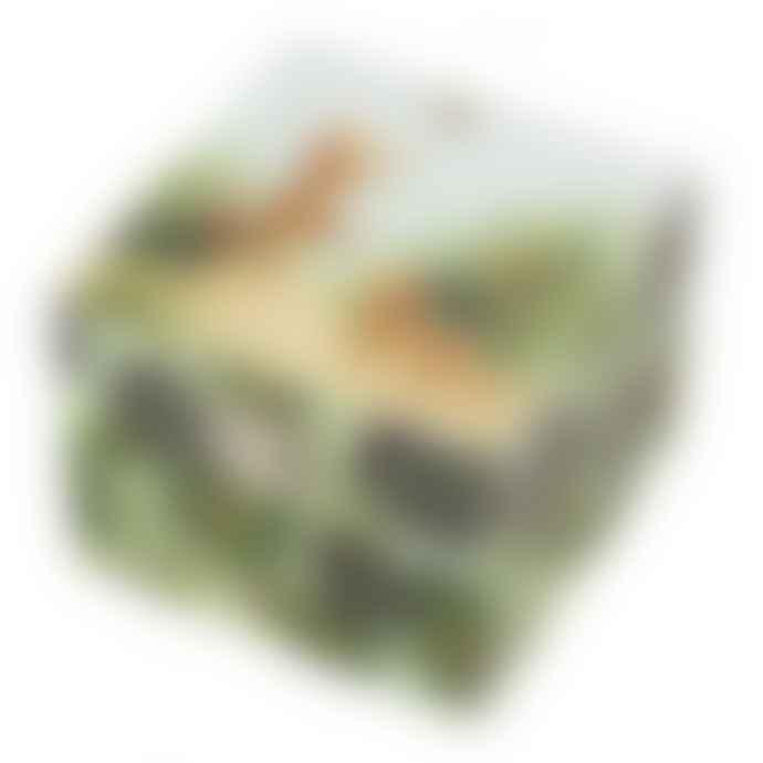 Trousselier Savannah Cube Music Box