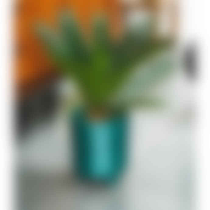 Ivyline Large Ceramic Plant Pot