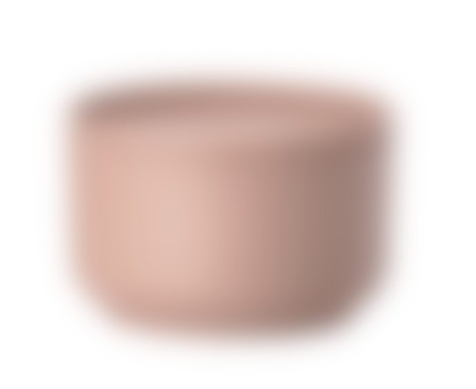 Zone Denmark Bowl Set of 2, Small, Nude