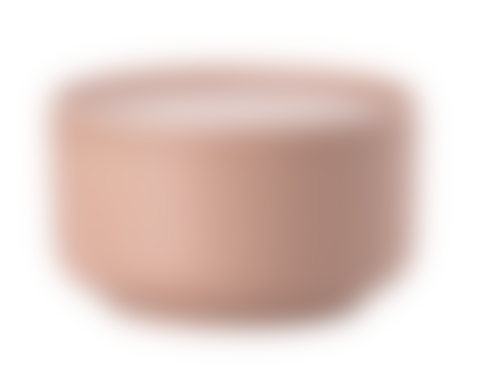 Zone Denmark Bowl Set of 2, Medium, Nude