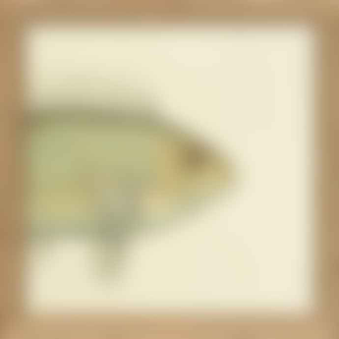 TheDybdahl Co. No SQ099 Half Fish Print with Oak Frame