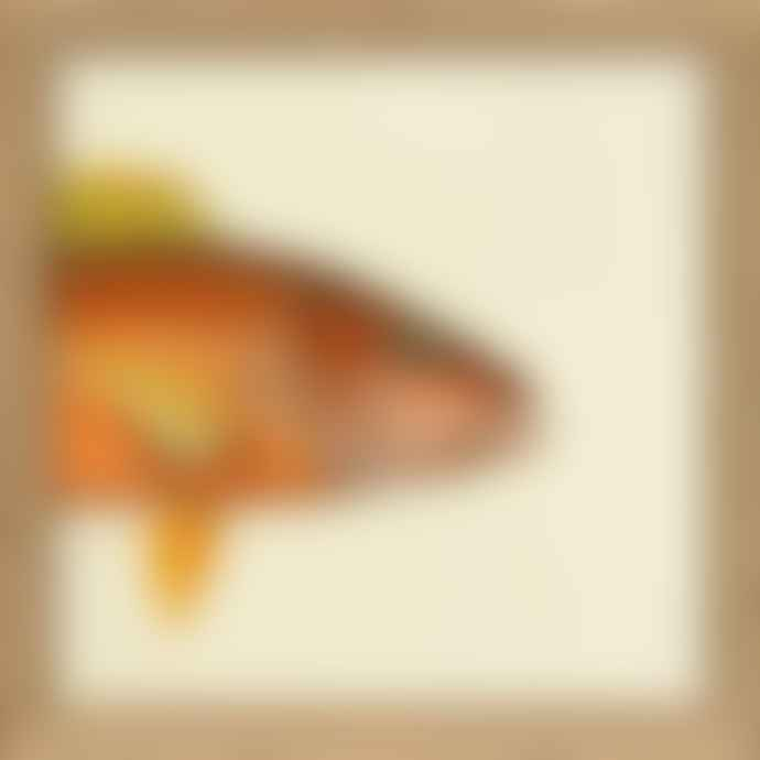 TheDybdahl Co. No SQ038 Half Fish Print with Oak Frame