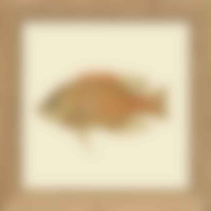TheDybdahl Co. The Pouty Mini Fish with Oak Frame