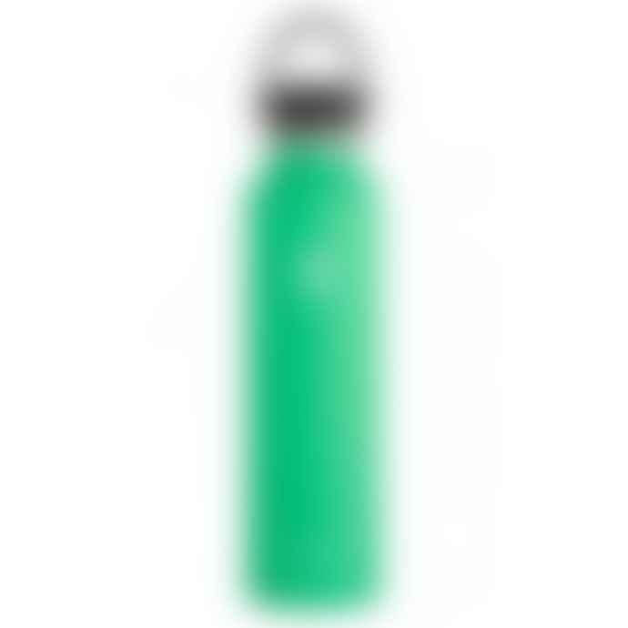 Hydro Flask Botella 24 Oz Spearmint