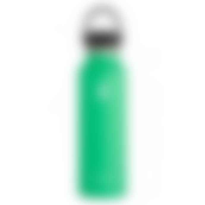 Hydro Flask Botella 21 Oz Spearmint