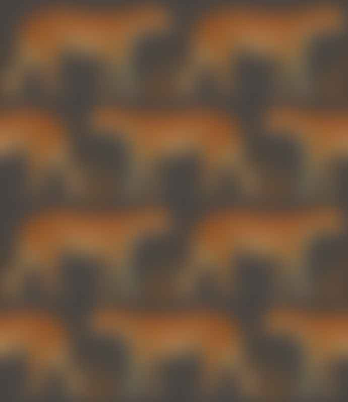 Grace and Grey 40cm Leopard Walk Silk Hand Rolled Shade