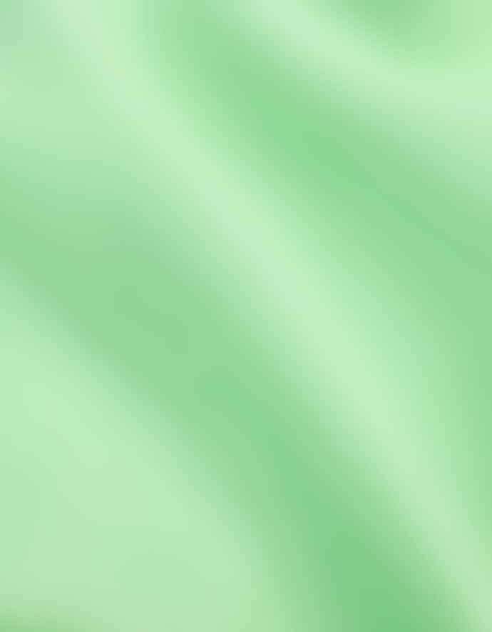 Colorful Standard Organic Tee Faded Mint