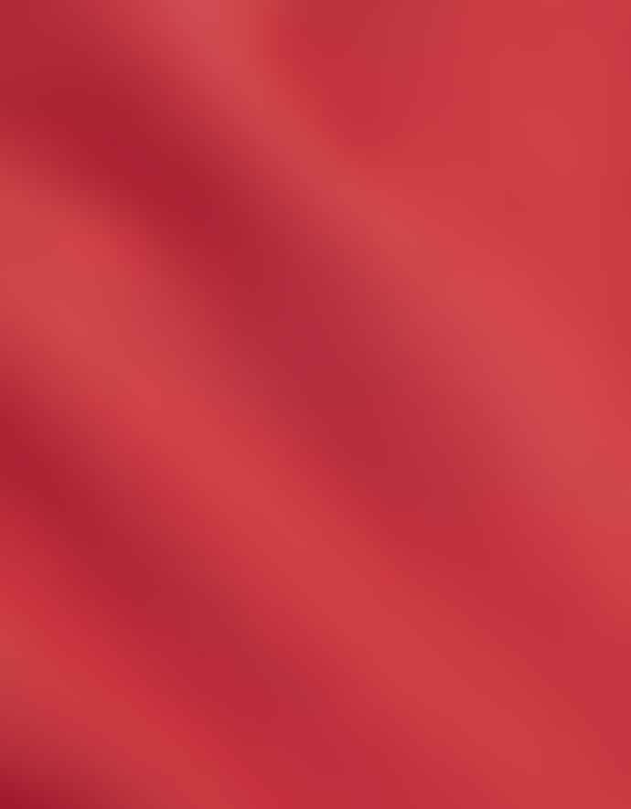 Colorful Standard Organic Tee Scarlet Red