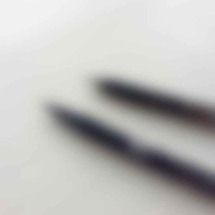 Meticulous Ink Brush Lettering Kit