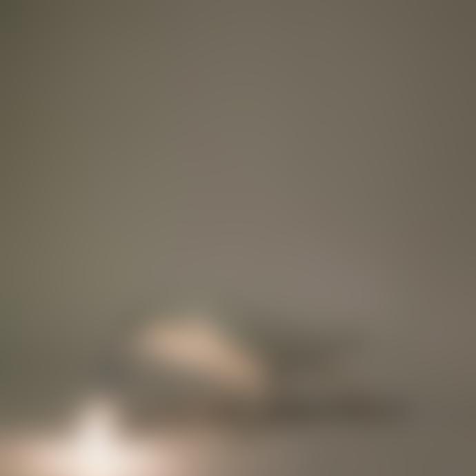 Seletti White Resin Bird Lamp