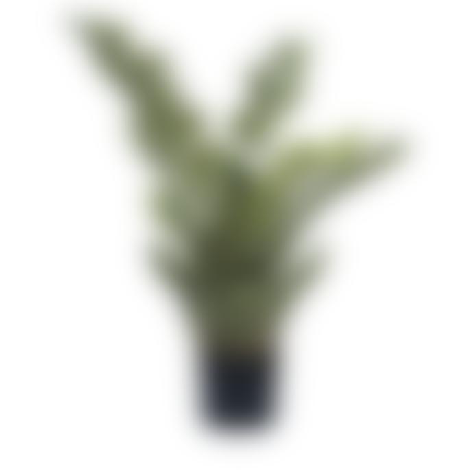 Dröm Collection Artificial zamia 90cm with plastic pot