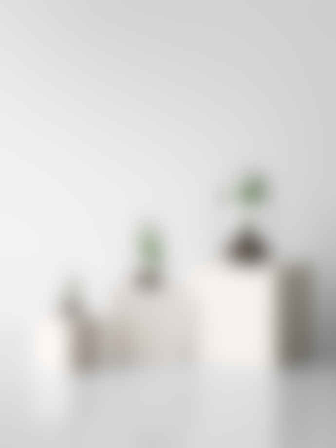Design House Stockholm  Set of 2 Grow Greenhouse Bell Jars