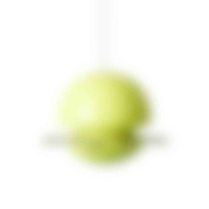 Green & Blue Birdball Seed Feeder