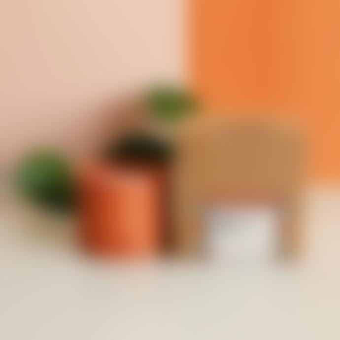 The Very Good Candle Company Terra / Asagiri Rapeseed Candle 180ml
