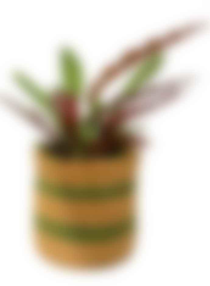 Hadithi Basket Natural/Green/Yellow