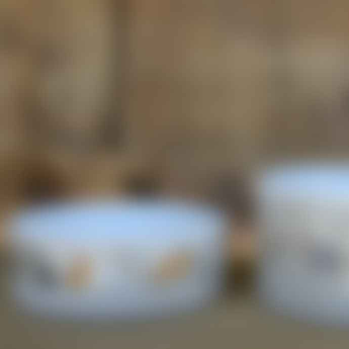 livs Ceramic Pet Bowl for Cats